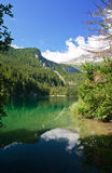 Tovel lake, Trentino, Italy Stock Photo