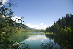 Tovel's lake in Italy. View of tovel's lake in summertime Stock Photos