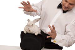 Tovenaar met een konijn royalty-vrije stock fotografie