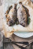 Tow grilled dorado fish Stock Images