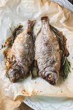 Tow grilled fish Stock Photography