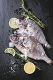 Tow raw fish with rosemary over black. Top view on tow raw fish bream with rosemary, lime and ice over black stone background Royalty Free Stock Images