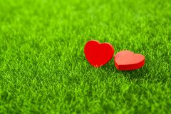 Tow red heart. Shape on grass Stock Images
