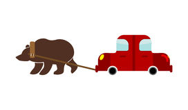 Tow in Russia. Russian Bear and car. Traditional national evacua. Te machine Stock Images