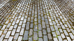 Tow tone grey cobbled street. A two tone cobbled path in East Lothian, Scotland Royalty Free Stock Photo