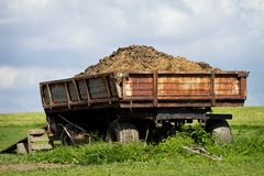 Tow tractor with horse manure. Standing on pasture royalty free stock photography