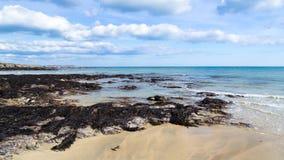 Towan strand Cornwall Fotografering för Bildbyråer
