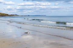 Towan strand Cornwall Royaltyfri Fotografi