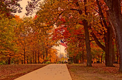 Toward the Flag. A walkway leading to the United States flag through Autumn colored trees Stock Photography