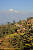 Towards the Himalayas. Looking towards the Himalayas from Nargakot late afternoon. Terraced fields in the foreground Royalty Free Stock Photography