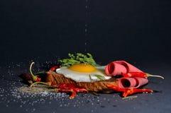 towarzyszący zdobycza kurczaka kuchni kartoteki karmowej włoskiej fotografii poczta przerobowy fachowy surowy kumberlandu oprogra Obraz Royalty Free