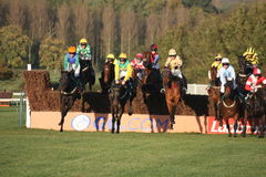 towcester hunt национальное участвуя в гонке Стоковая Фотография
