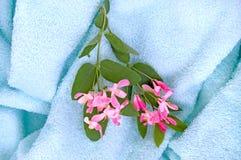 Towel_2 bleu Photographie stock libre de droits