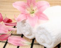Free Towel Royalty Free Stock Photography - 9615407