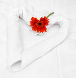 Towel and gerbera Royalty Free Stock Image