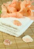 Towel, gladiolus and cockleshells. Stock Images
