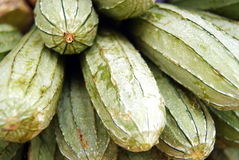 Towel gourd Stock Image