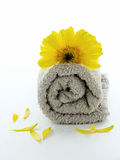 Towel grey spa. Grey towel rolled with yellow flower, salt and petals isolated Royalty Free Stock Photos