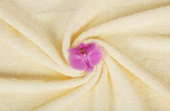 Towel with an orchid flower Stock Photos