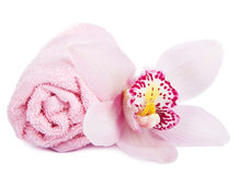 Towel and orchid isolated royalty free stock photo