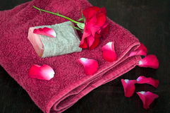 Towel and rose petals spa Royalty Free Stock Photo