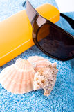Towel, shells, sunglasses and lotion Stock Images