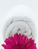 Towel spa wellness. White towel role with flower close up Stock Photo