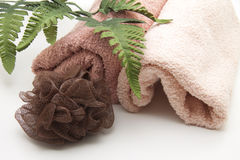 Towel with sponge. And branch Stock Photography