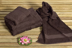 Towel on sunbed Stock Images