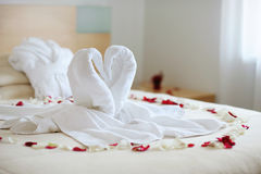 Towel swans Stock Images