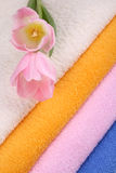 Towels. Stack of clean colorful towels with tulips close-ups royalty free stock photo