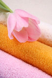 Towels. Stack of clean colorful towels with tulip close-ups royalty free stock image