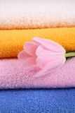 Towels. Stack of colorful towels with pink tulips close-ups royalty free stock images
