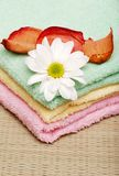 Towels with a daisy and rose petals Stock Photos