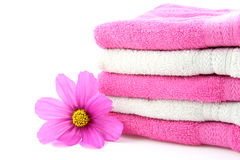 Towels and flower Royalty Free Stock Photo