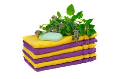 Towels with fresh mentha Royalty Free Stock Photo