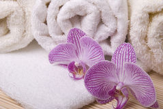 Towels and orchid Royalty Free Stock Images