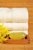Towels and soap Stock Images