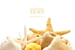 Towels and starfish royalty free stock image