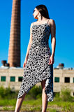 Tower. Elegant woman in a dress Royalty Free Stock Images