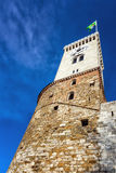 Tower of an ancient castle Royalty Free Stock Photo