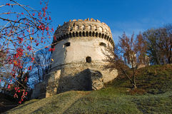 Tower of the ancient castle Royalty Free Stock Photos