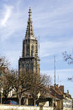 The tower of The Bern Muenster Royalty Free Stock Images