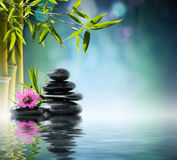 Tower black stone and purple hibiscus. With bamboo on the water stock photos