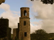 Tower At Blarney Castle Ireland Stock Photography