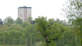 Tower Block rising from the forest 3. Tower Block rising from the forest on a cloudy day royalty free stock photos
