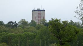 Tower Block rising from the forest 1. Tower Block rising from the forest on a cloudy day royalty free stock photo