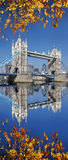 Tower Bridge with autumn leaves  in London, UK Stock Image