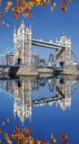 Tower Bridge with autumn leaves  in London, UK Royalty Free Stock Photo