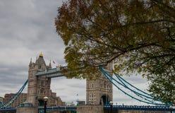 Tower Bridge in Autumn. A shot of Tower Bridge taken through the trees stock images